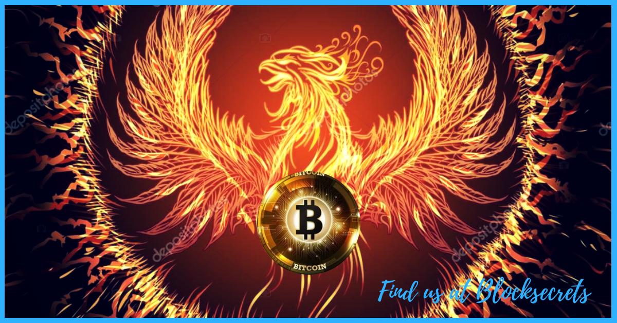 come utilizzare bitcoin in amazzonia come il commercio bitcoin senza soldi